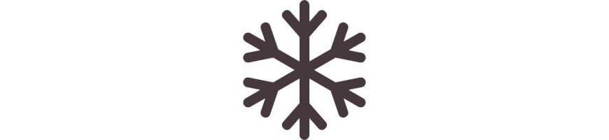 01.21 Światowy Dzień Śniegu